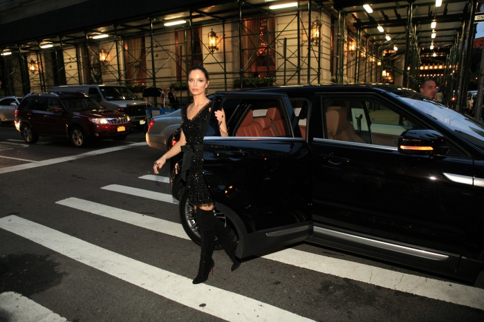 Range Rover Clips